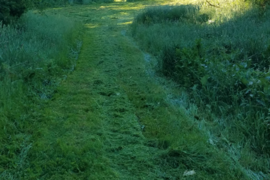 trail mowing